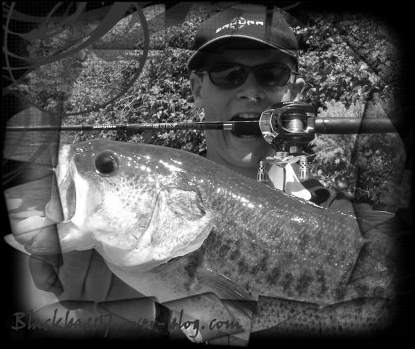 gros black bass pris sur leurre de 35 grs...