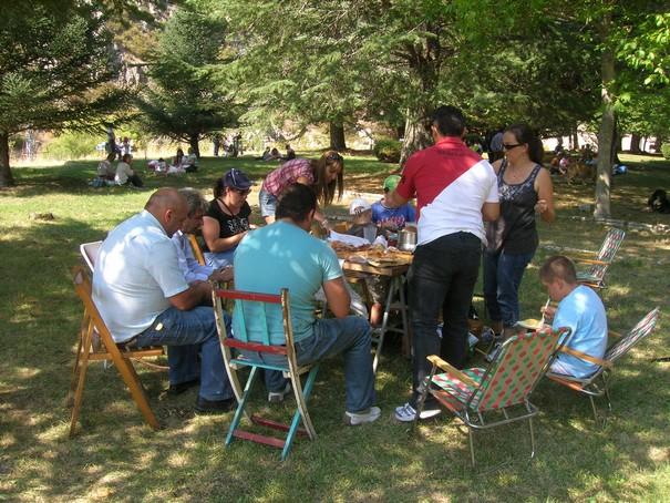 picnic11.jpg