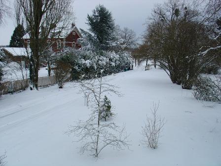 Encore de la neige ce matin !  dans Message du jour 00113