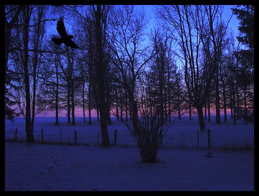 Un soir... dans Les Oiseaux Noirs dsc00610