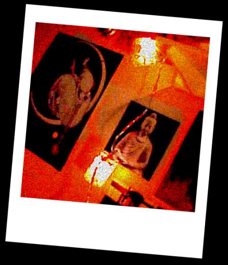 Fragment de chambre, sur le mur à gauche...  dans Le jardin des souvenirs img02111