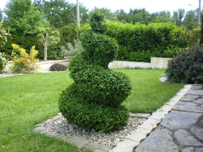 Le jardin de laurence page 2 au jardin forum de jardinage - Arbuste contemporain ...