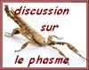 Discussions sur le Phasme et l'élevage