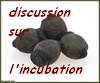Discussions sur l'Oeuf et l'incubation
