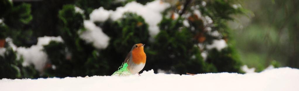 neige_12