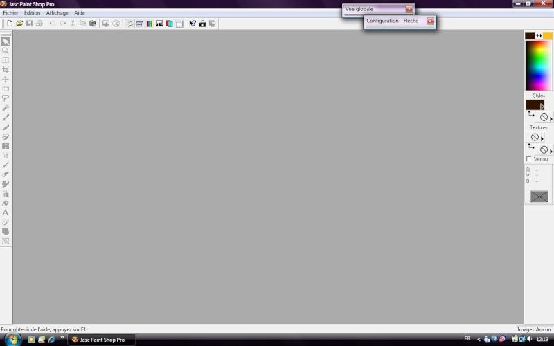 Paint Shop Pro Modifier Texte