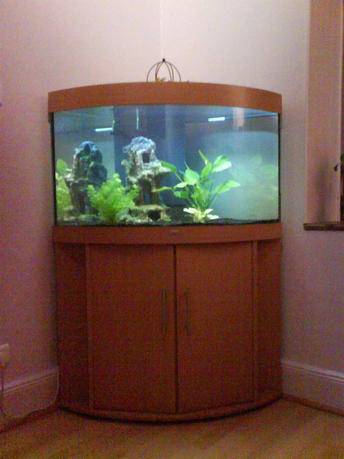 Premier aquarium choisir rio125 rio180 ou aquatlantis 101 for Prix aquarium rond