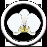 Storczyki Wiki - Orchids Wiki