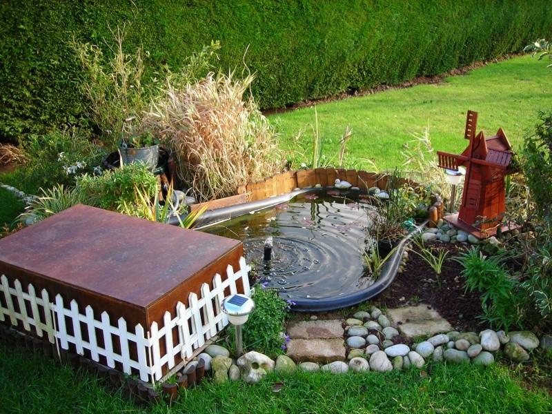Mon petit bassin de jardin 500 l photos for Bassin a poisson de jardin