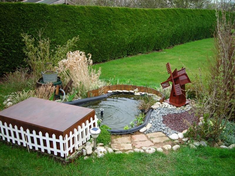 mamzelle didounne76 mon petit bassin de jardin photos. Black Bedroom Furniture Sets. Home Design Ideas