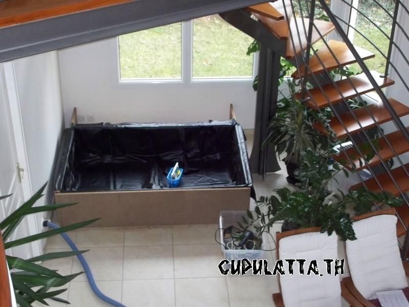 Exemples de bassins int rieurs pour aquatiques for Bassin exterieur pour tortue