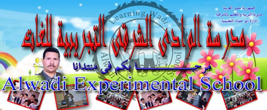 Alwadi Experimental School