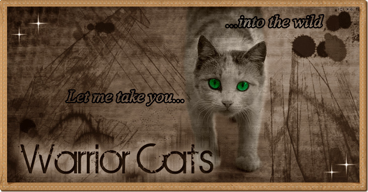 Wer Ist Online Warrior Cats