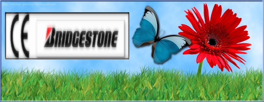 CE Bridgestone