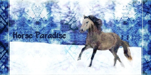 Horse-paradise