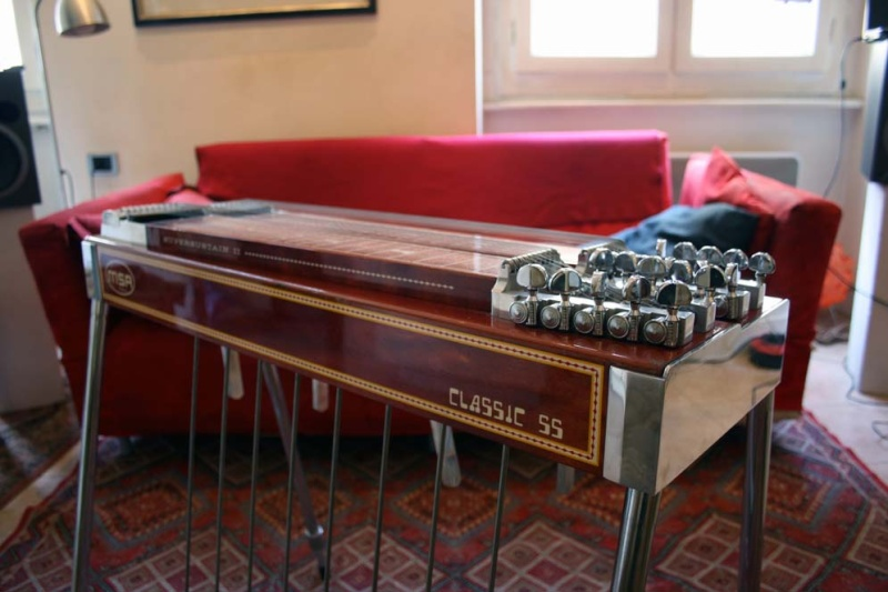 the steel guitar forum view topic msa d10 classic ss2 europe. Black Bedroom Furniture Sets. Home Design Ideas