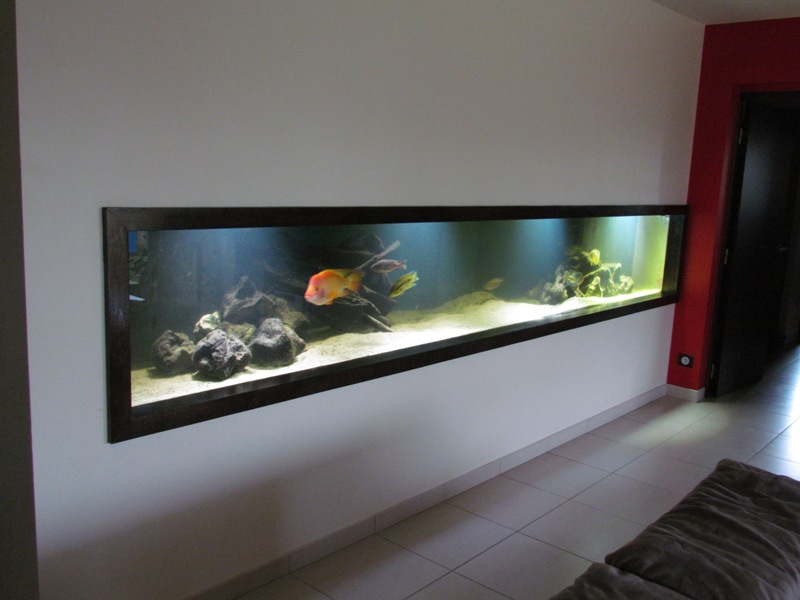 aquarium encastrable dans un mur prix construction maison b ton arm. Black Bedroom Furniture Sets. Home Design Ideas